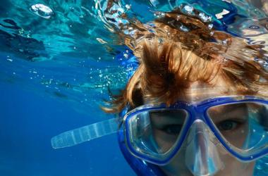 Image of Snorkelling & Diving